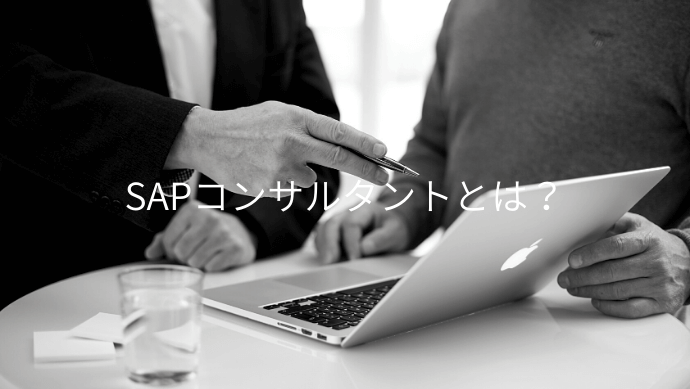 SAPを使ったコンサル業 SAPコンサルタントについて解説
